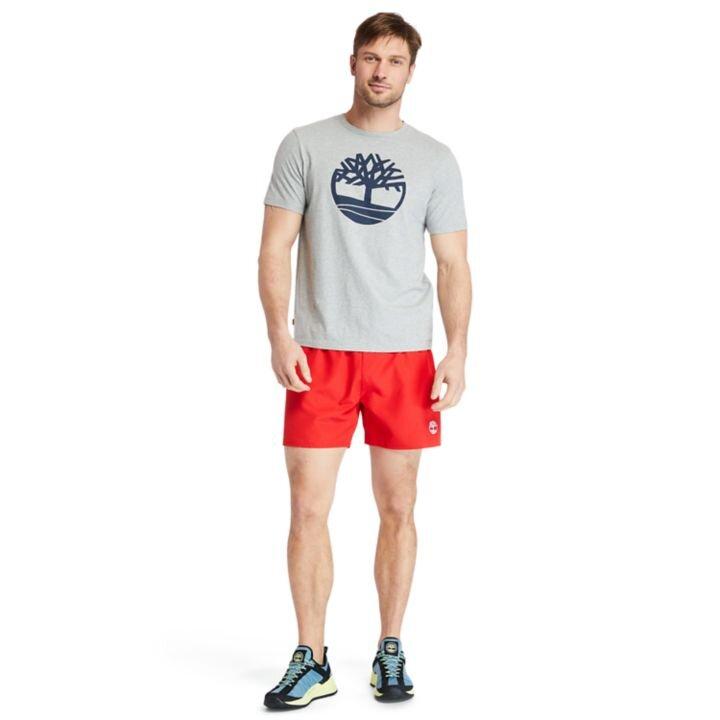 Kennebec River Tree Logo Gri Erkek Tişört