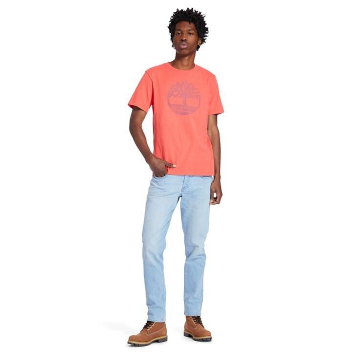 Kennebec River Ağaç Logolu Bordo Erkek T-Shirt