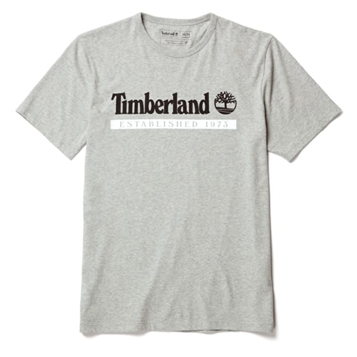 Established 1973 Gri Erkek T-Shirt