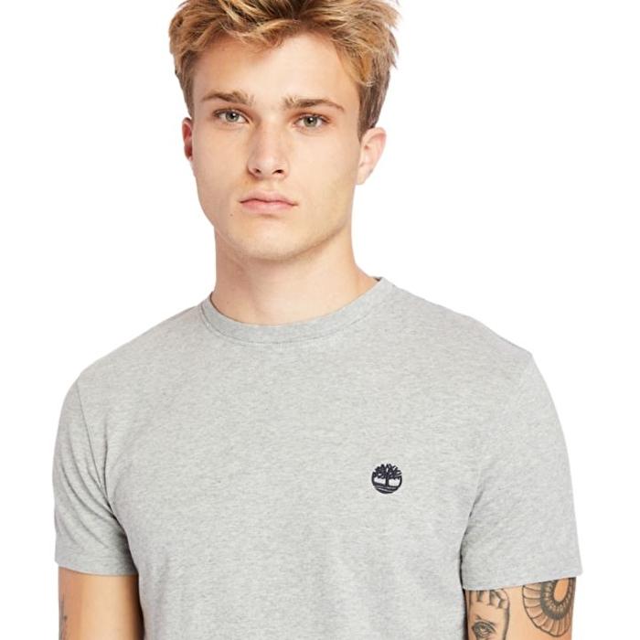 Dunstan River Gri Bisiklet Yaka Erkek T-Shirt